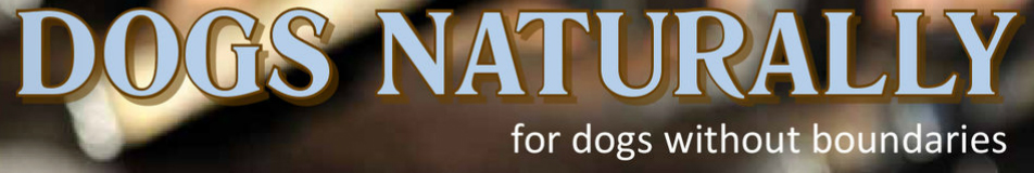 Dogs Naturally Magazine - Tea for Dogs